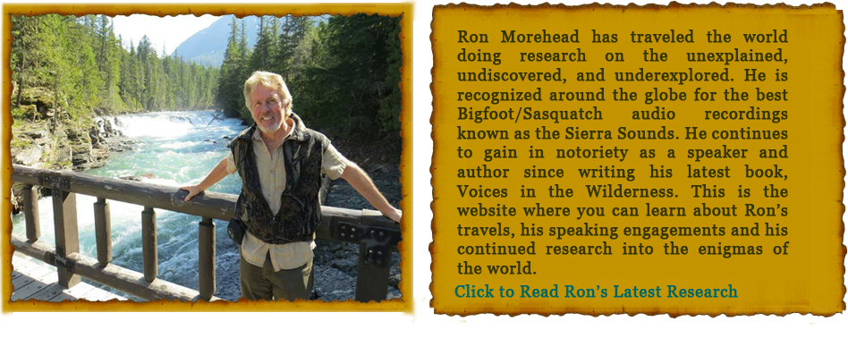 Ron_Morehead_home_top_row_04.png